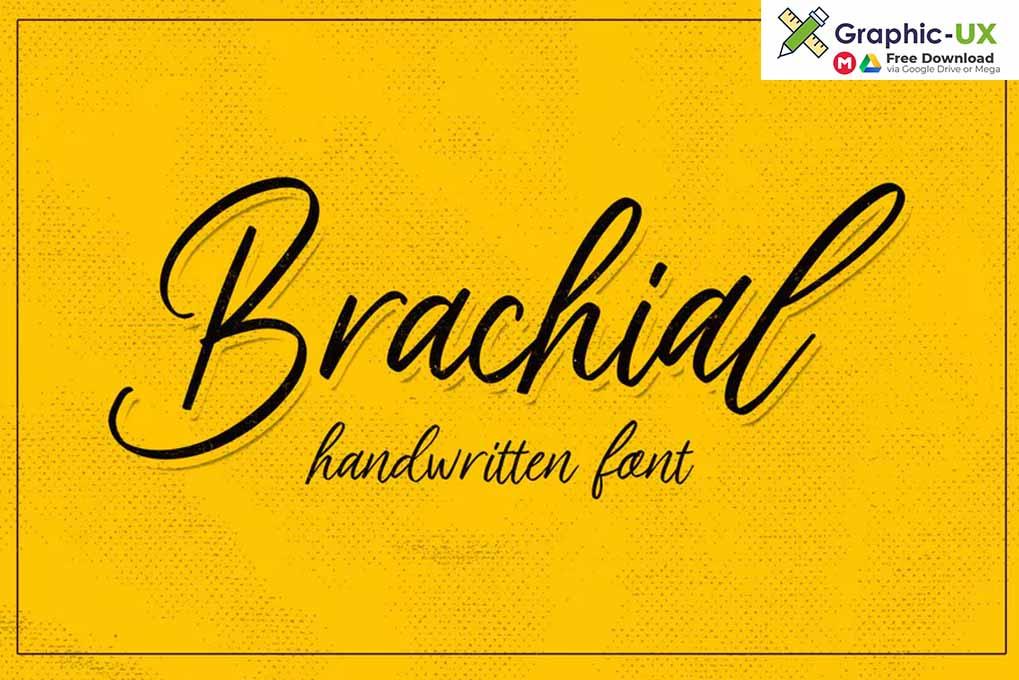 Brachial Script Font